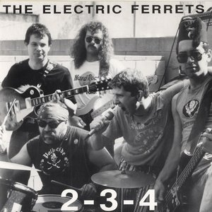 Image for 'Electric Ferrets'