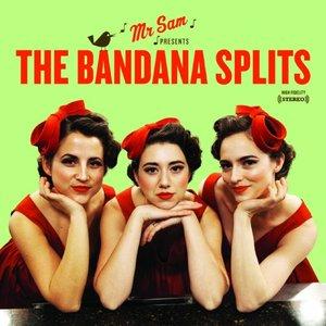 Bild für 'The Bandana Splits'