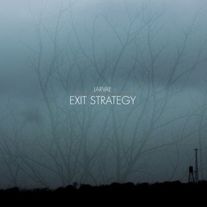 Image for 'Exit Strategy'