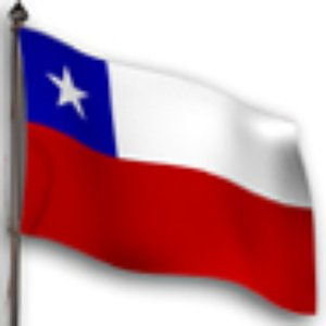 Image for 'Cuecas chilenas'