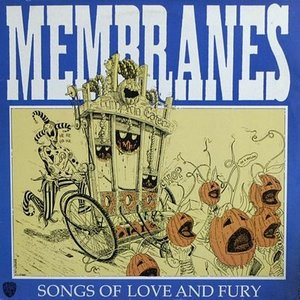 Image for 'Songs Of Love And Fury'