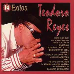 Bild für '14 Exitos'