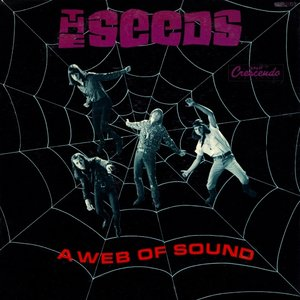 Image for 'A Web Of Sound'