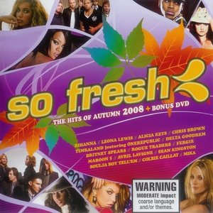 Image for 'So Fresh: The Hits of Autumn 2008'