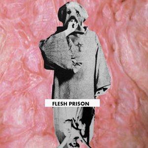 Image for 'Flesh Prison'