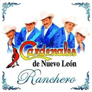 Image for 'Ranchero'