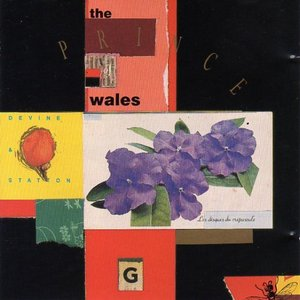 Image for 'the prince of wales'