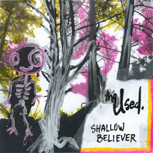 Image for 'Shallow Believer'