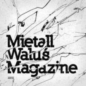 Image for 'Kasia Nosowska & Mietall Waluś'