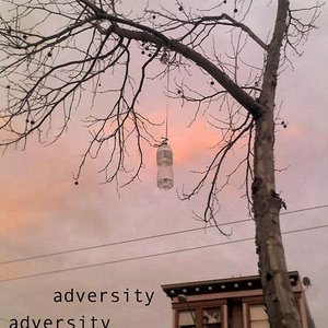Image for 'Adversity'