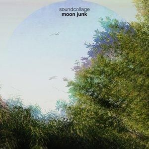Imagen de 'Moon Junk EP'