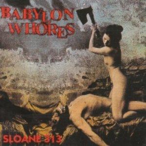 Image for 'Sloane 313'