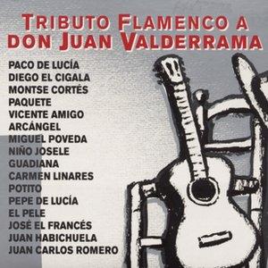 Image for 'Garbo Malagueño (Malagueña/Verdial)'