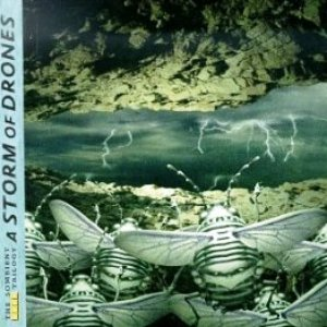 Image for 'A Storm of Drones cd2 (Environmental)'