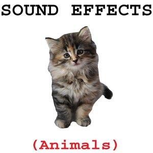 Image for 'Animal Sound Effects'