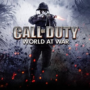 Image for 'Call Of Duty: World At War'