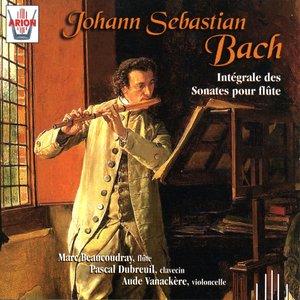 Image for 'Partita en la mineur pour flûte seule, BWV 1013 : Sarabande'