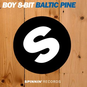 Image for 'Baltic Pine (Baramuda Remix)'