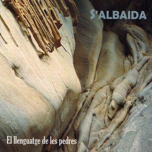Image for 'El Llenguatge De Les Pedres'
