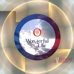 Image for 'Wonderful Life'