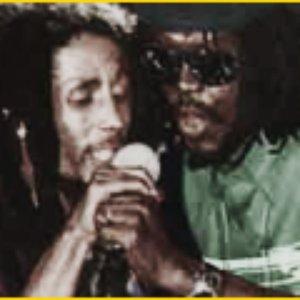 Bild för 'Bob Marley & Peter Tosh'