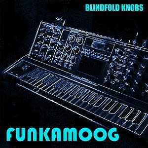 Image for 'Funkamoog'