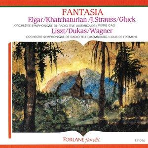 Bild för 'Fantasia'