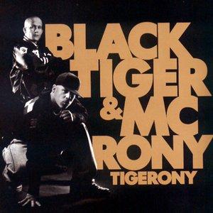 Image for 'Tigerony'