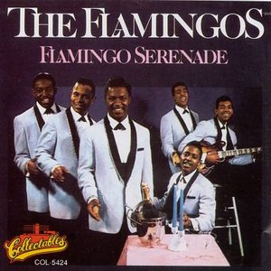 Image for 'Flamingo Serenade'