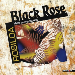 Image for 'Rosiloa Hits Videos & Remixes'