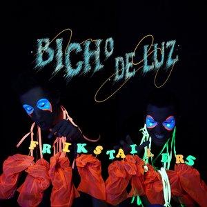 Image for 'Bicho de Luz'