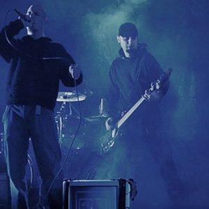 Bild für 'Pankreas'