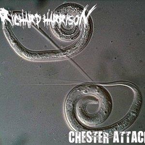Image for 'Mini Ep Chester Attack!'