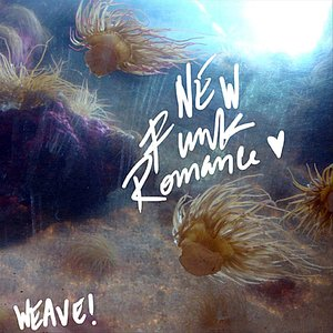 Image for 'New Funk Romance'