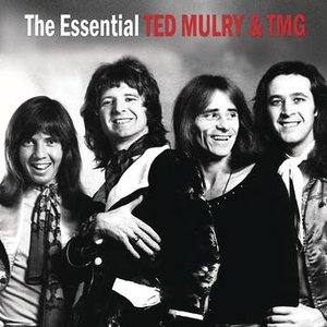 Image for 'The Essential Ted Mulry Gang'