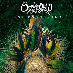 Bild für 'Psicosonorama'