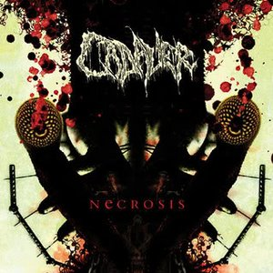 Image for 'Necrosis'