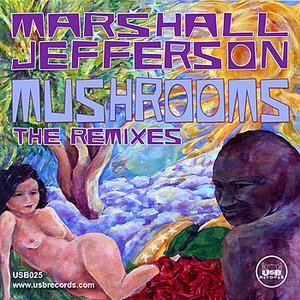 Image for 'Mushrooms (The Remixes)'