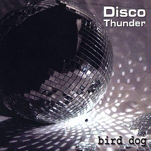 Image for 'Disco Thunder'