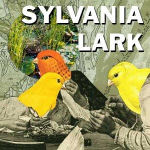 Bild för 'Sylvania Lark'