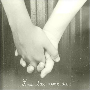 Image for 'First Love Never Die'
