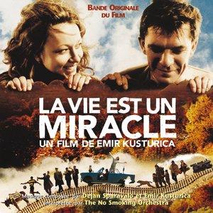 Image for 'La Vie Est Un Miracle'