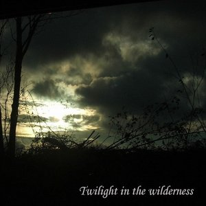 Image for 'Twilight in the Wilderness'
