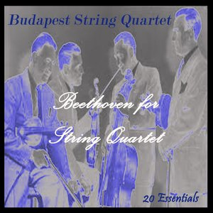 Image for 'String Quartet No. 1, In F Major, Op. 18: I. Allegro Con Brio'