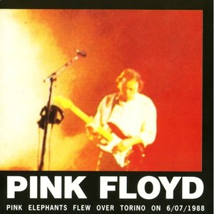 Image for 'Pink Elephants Flew Over Torino on 6/07/1988 (disc 1)'