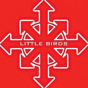 Image pour 'Little Birds'