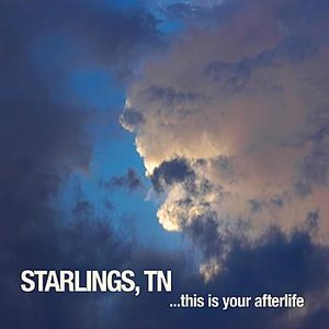 Image for 'This is Your Afterlife'