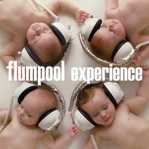 Immagine per 'experience'