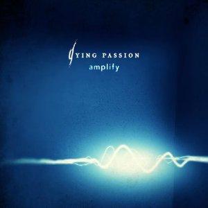 Immagine per 'Amplify'