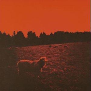 Image for 'HELL-SEE (bonus disc)'